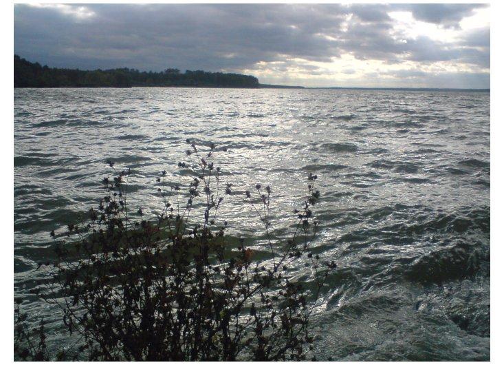 nad wodą